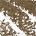 3.5 - neutral medium brown